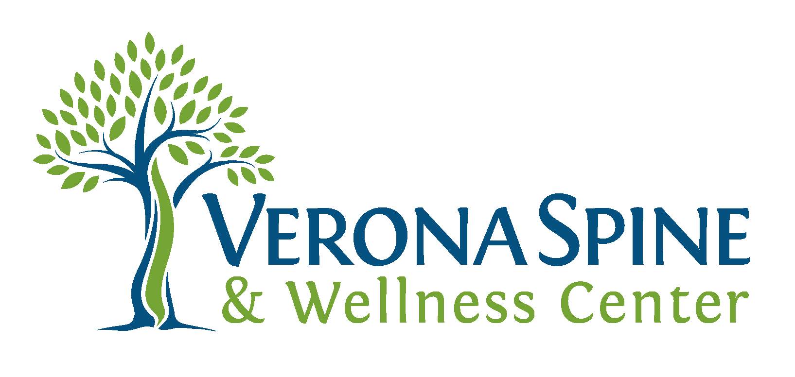 Verona Spine & Wellness Center, links to their site